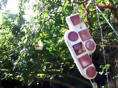 Heckenrosen und Suncatcher im Garten