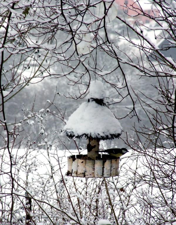 Vogelhäuschen aus Birke