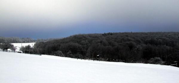 Schnee-Spaziergang im Westerwald