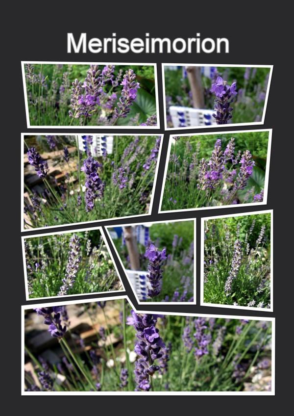 Lavendelfarbene Mosaik Windlichter