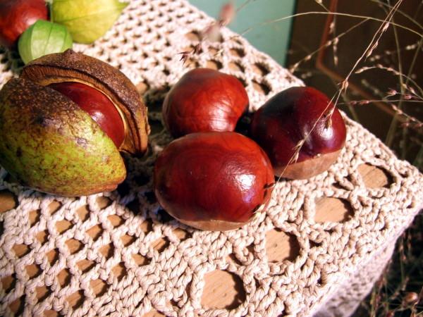 Herbstdeko mit Kastanien