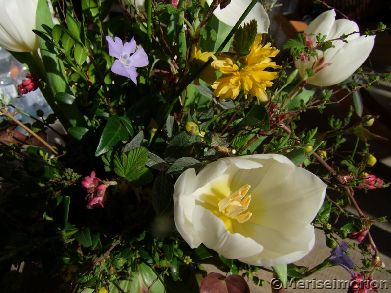 Pastellfarbener Frühlingsstrauß