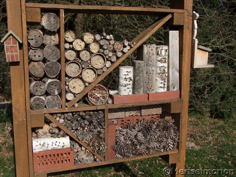 Insektenhotel im Frühlingsgarten