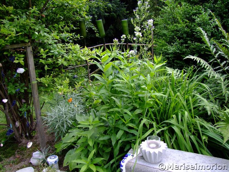 Blauer Mosaik Garten