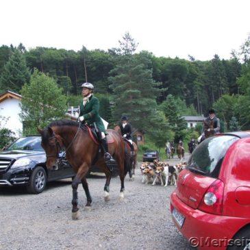 Die Cappenberger Meute im Westerwald