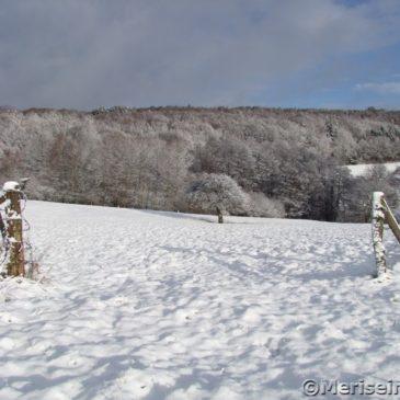 Westerwald Schneelandschaft