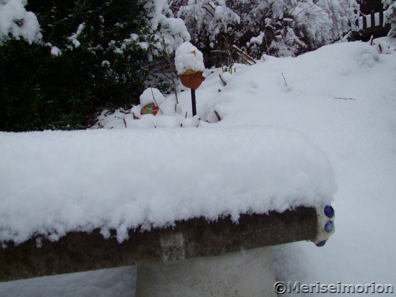 Schneehütchen