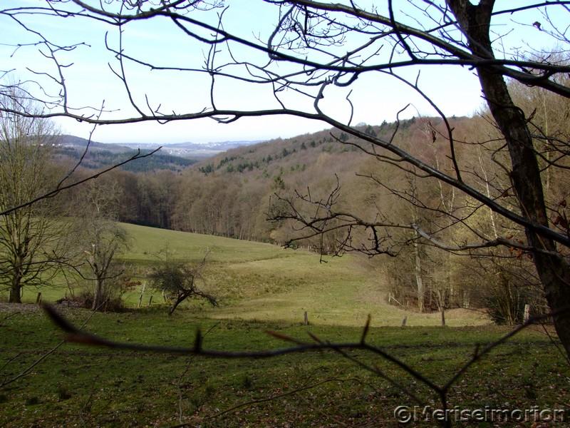 Landschaft Westerwald