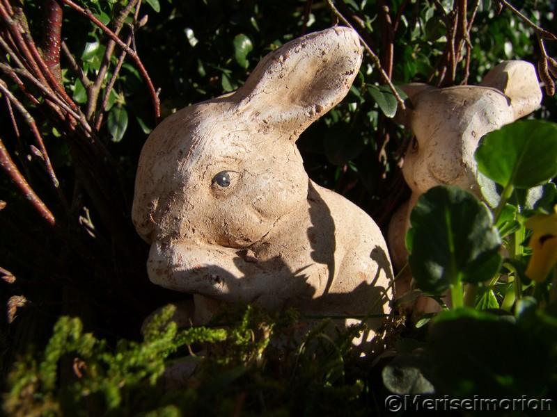 Osterhase im Garten