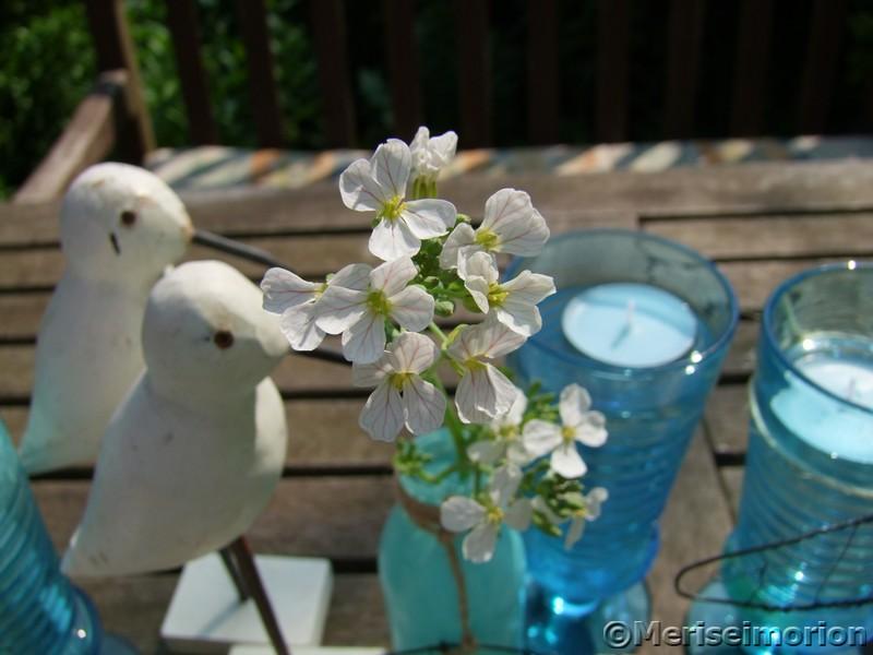 Tischdeko weiße Blüten