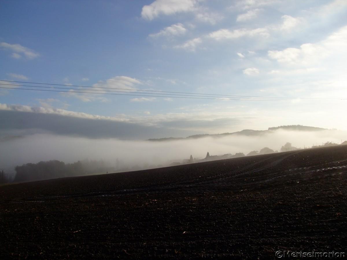 Nebelmorgen im Westerwald
