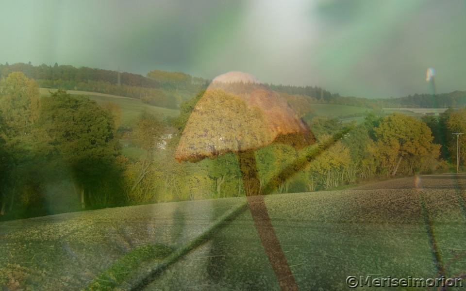 Herbstbild mit Pilz und Landschaft