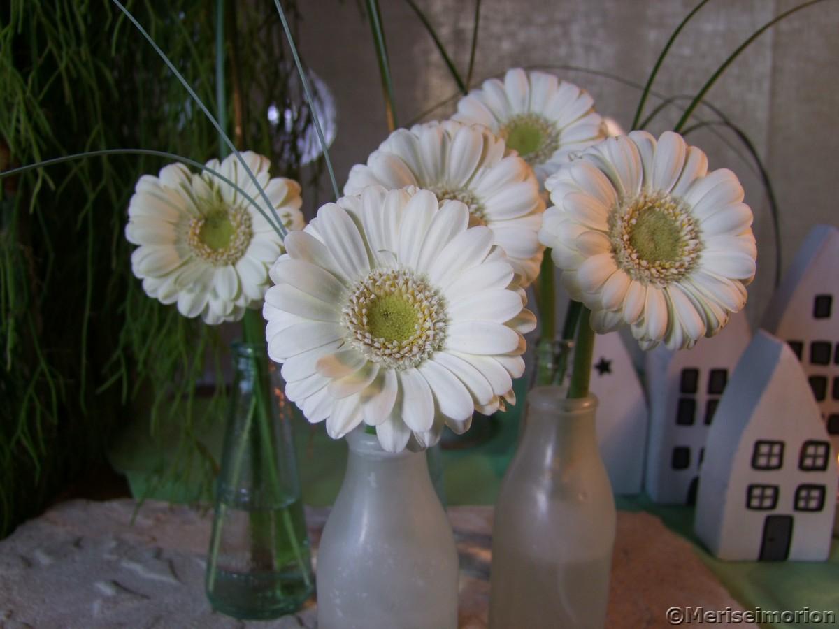 Weiße Gerbera Tischdeko