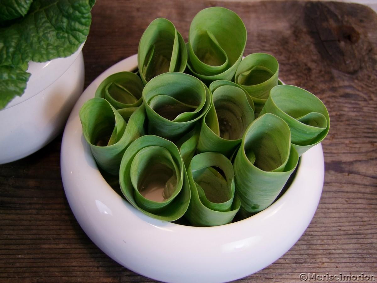 Tulpenblätter Deko