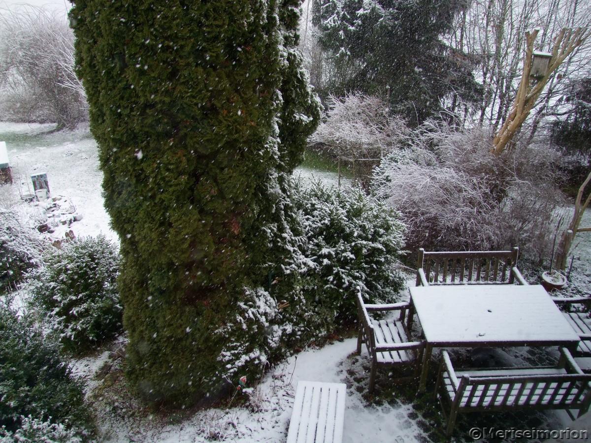 Schnee im Westerwald