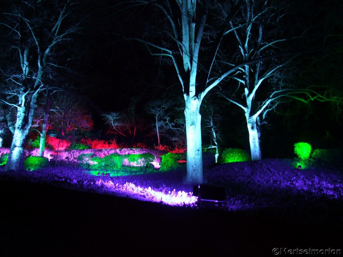 Bingen Lichterfest