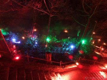 Lichterfest in Bingen