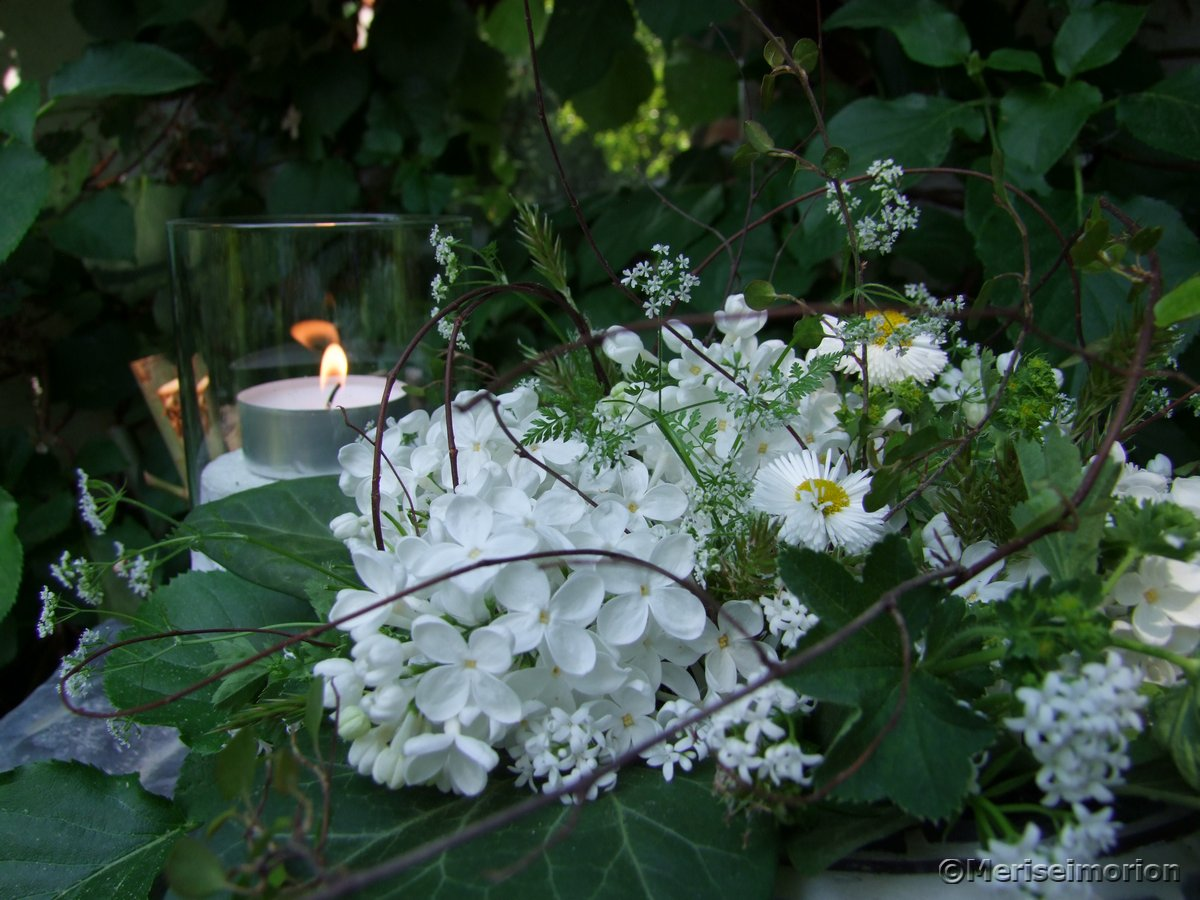 Weißer Flieder Tischdeko