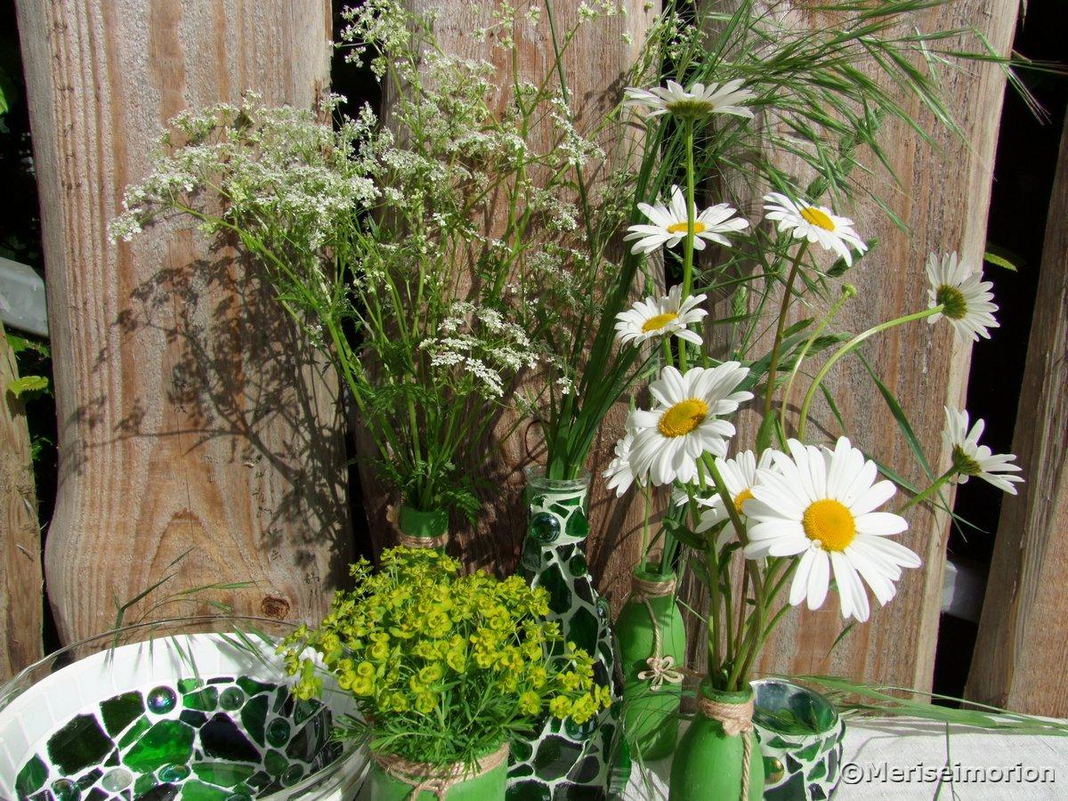 Weiße Wiesenblumen
