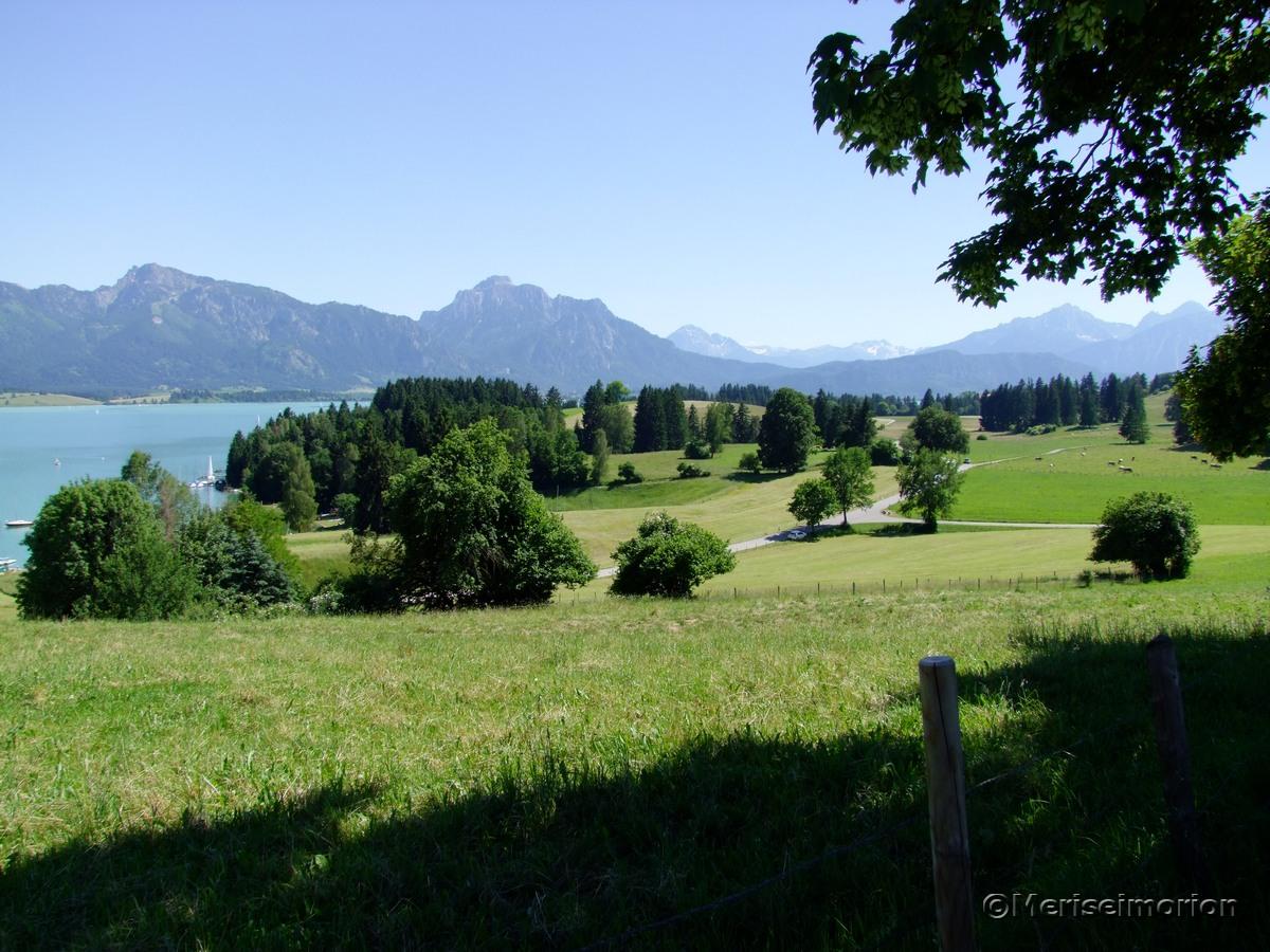 Forggensee und Alpenpanorama
