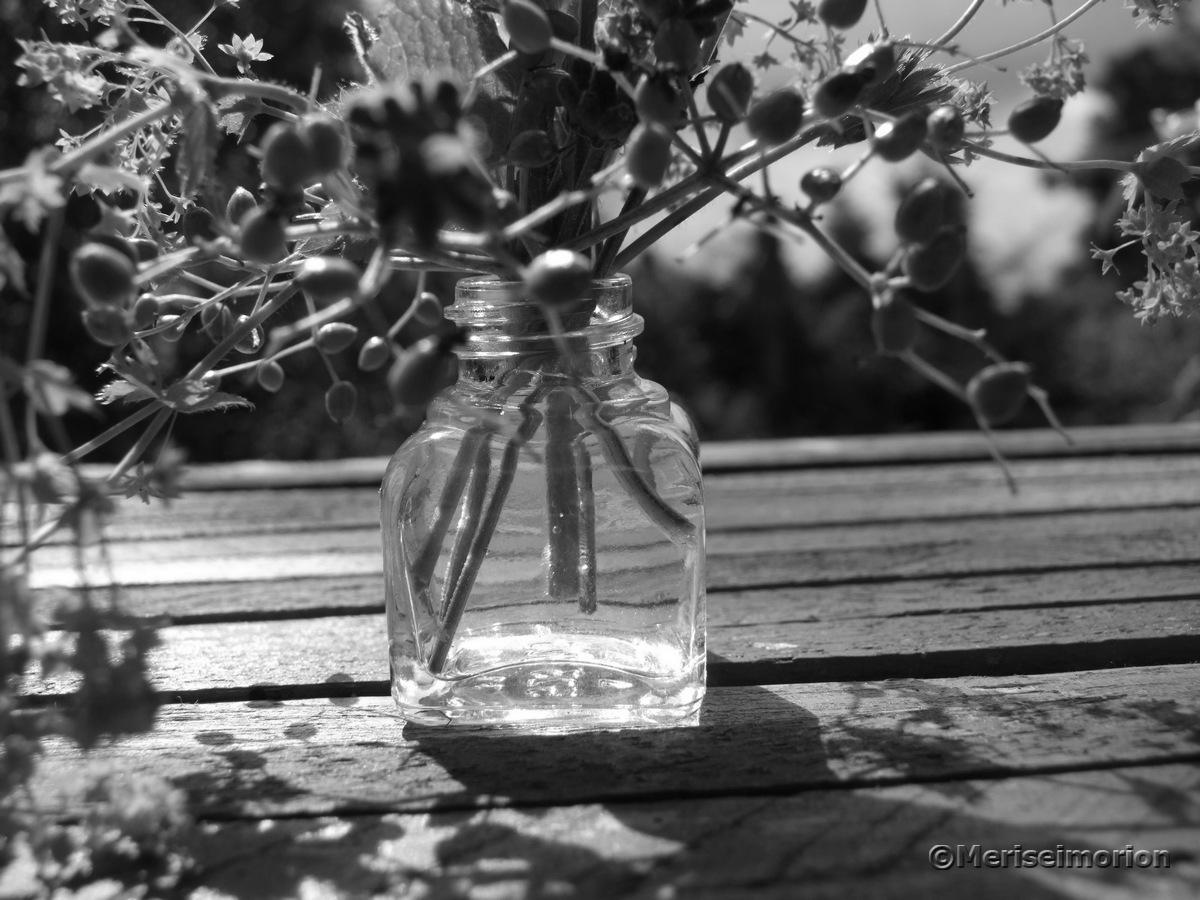 Tintenfass schwarz-weiß Fotografie
