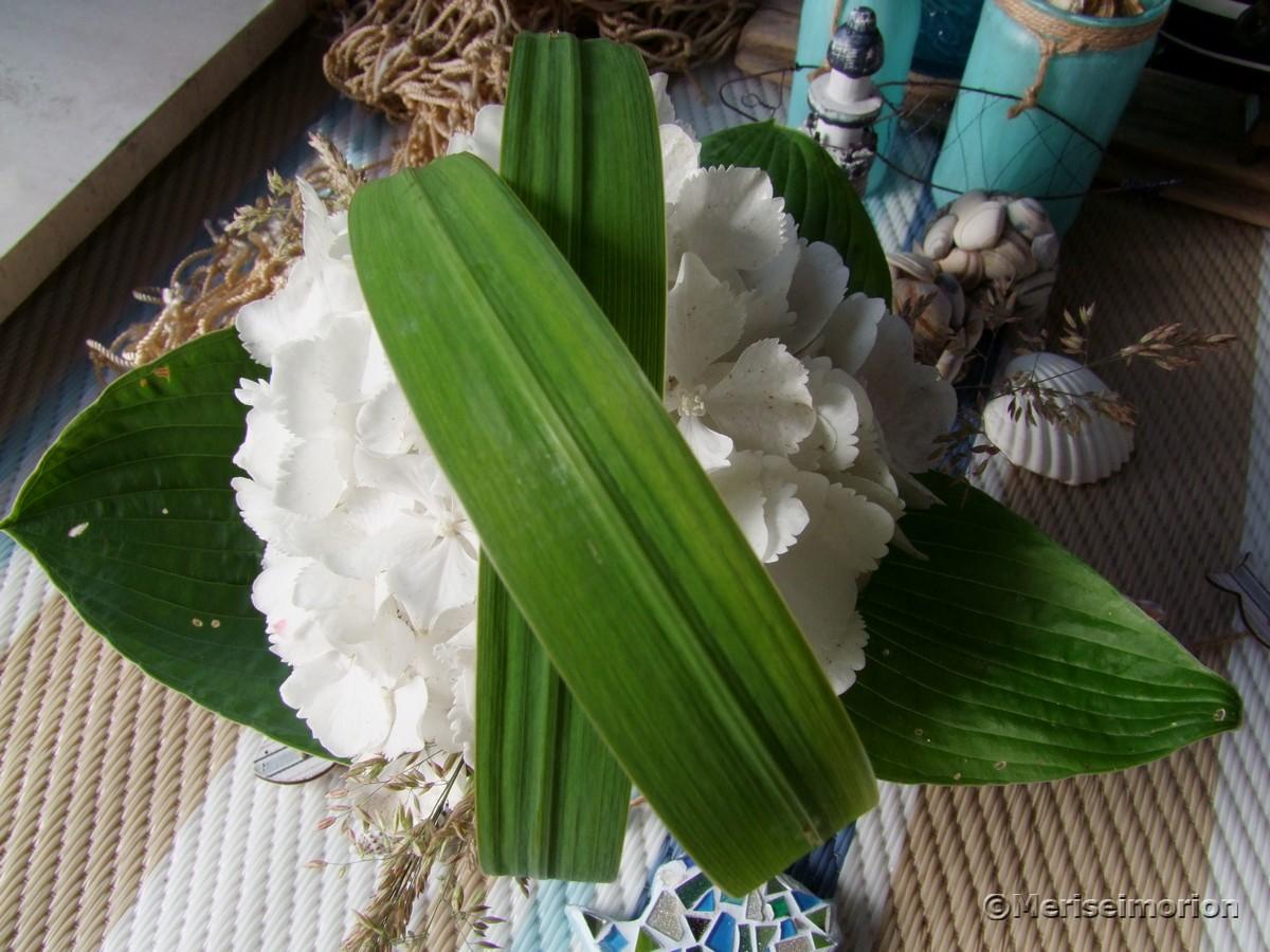 Tischdeko mit weißen Hortensien