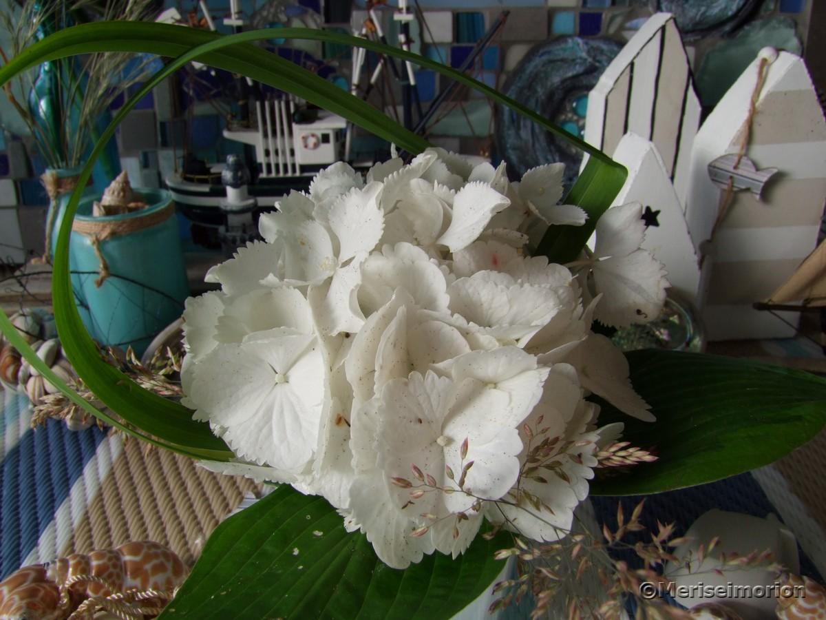maritime Tischdeko mit Hortensien