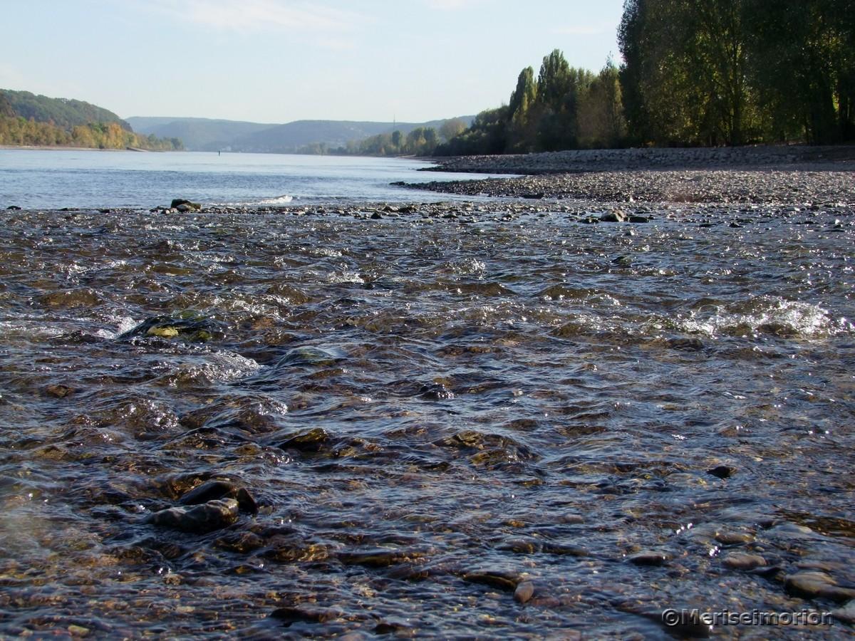 Ahrmündung im Rhein