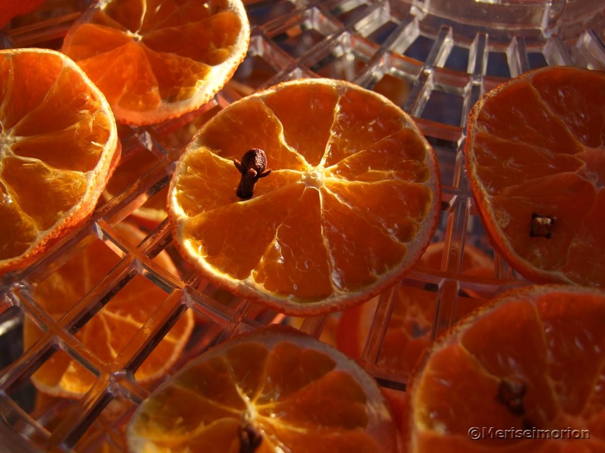 Dörrautomat Mandarinen