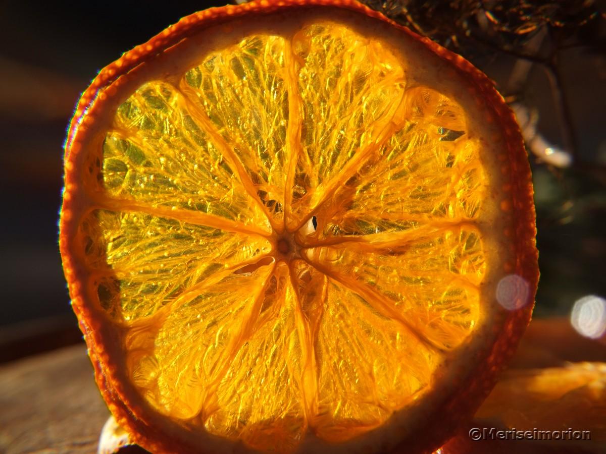 Mandarinenscheiben getrocknet