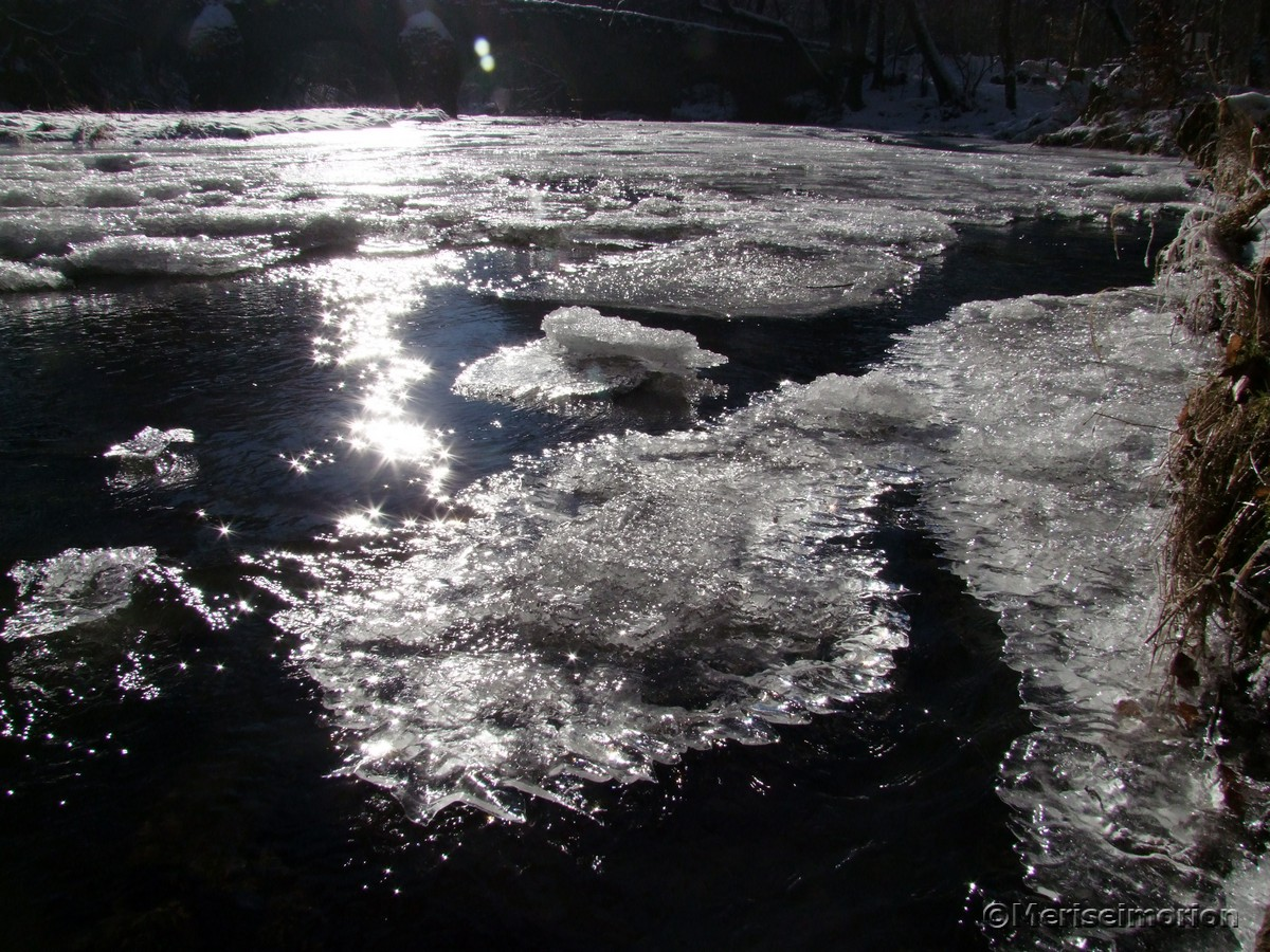 Winterspaziergang im glitzerndem Schnee