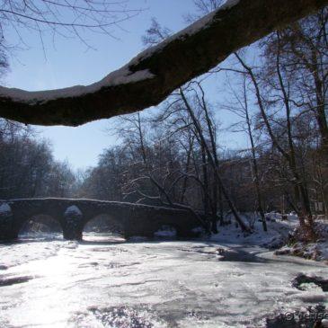 Winterspaziergang an der Nisterbrücke