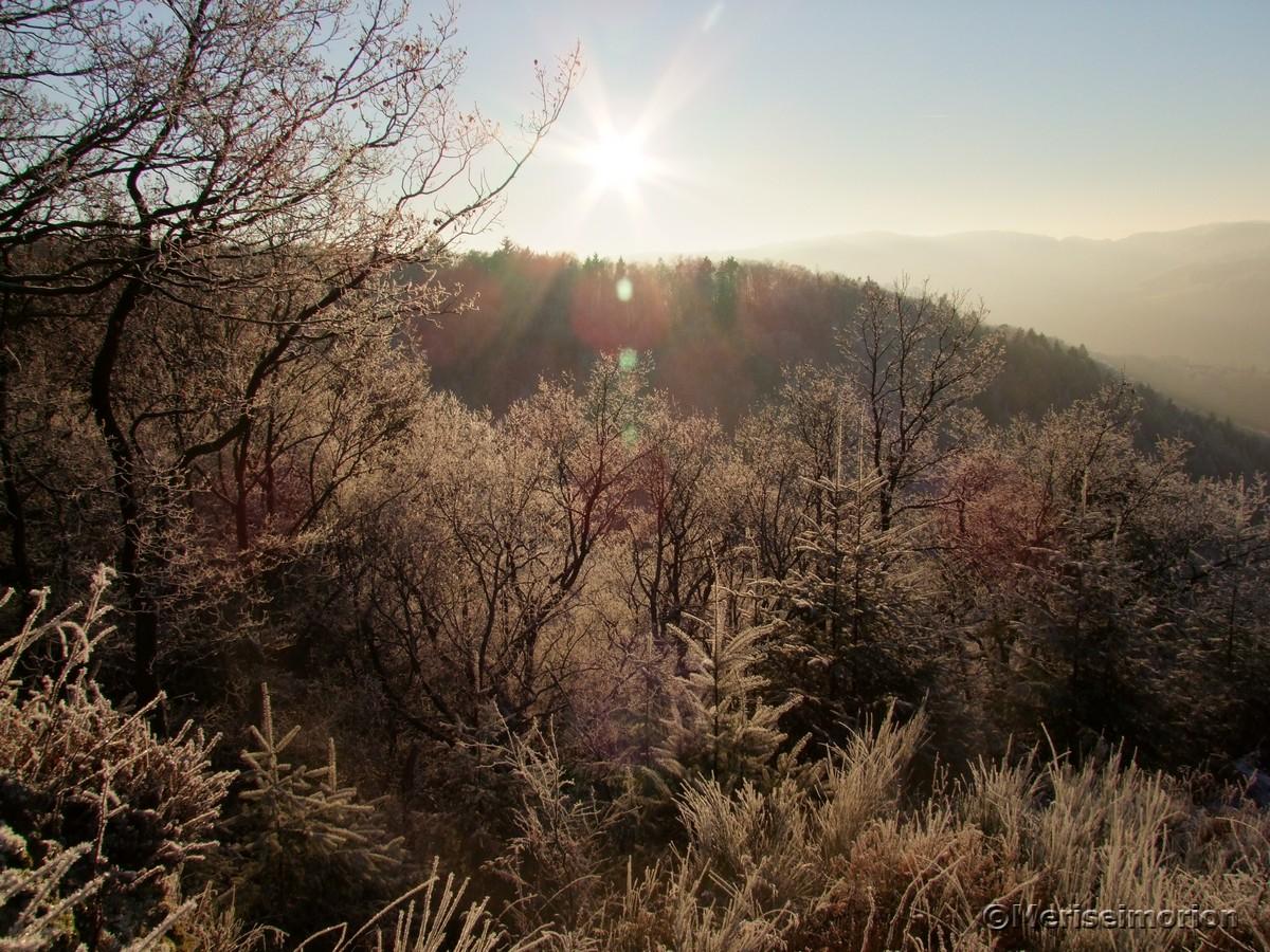 Westerwald Wandern