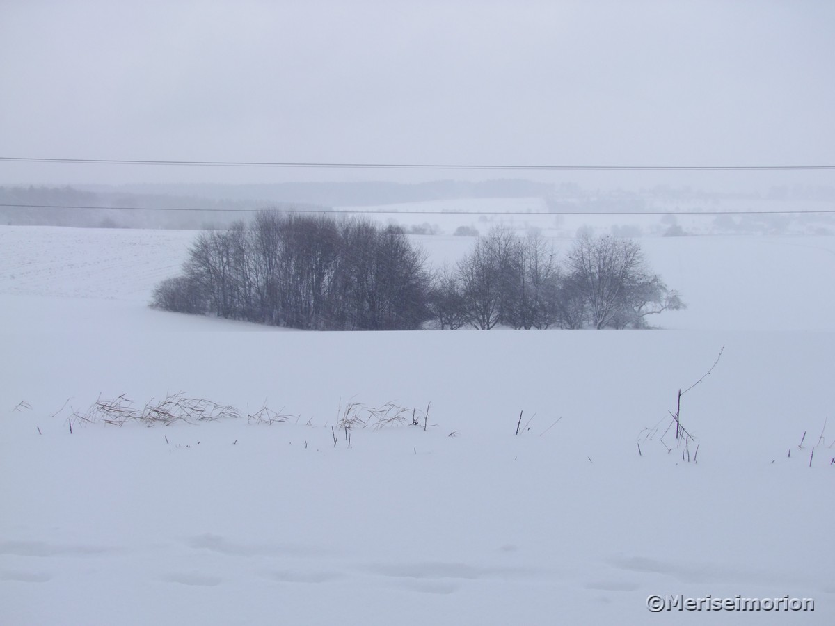 Schneelandschaft im Westerwald