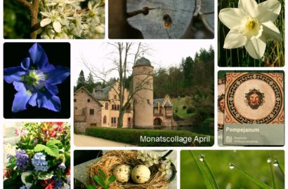 Monatscollage April 2017