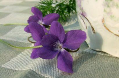 Osterdeko mit duftenden Veilchen