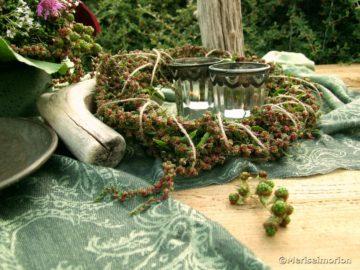 Grüne Brombeeren und Mangold Samen