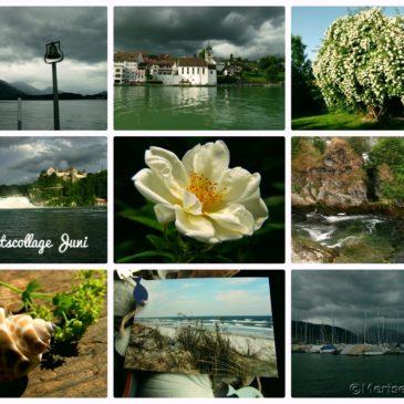 Juni in Bildern