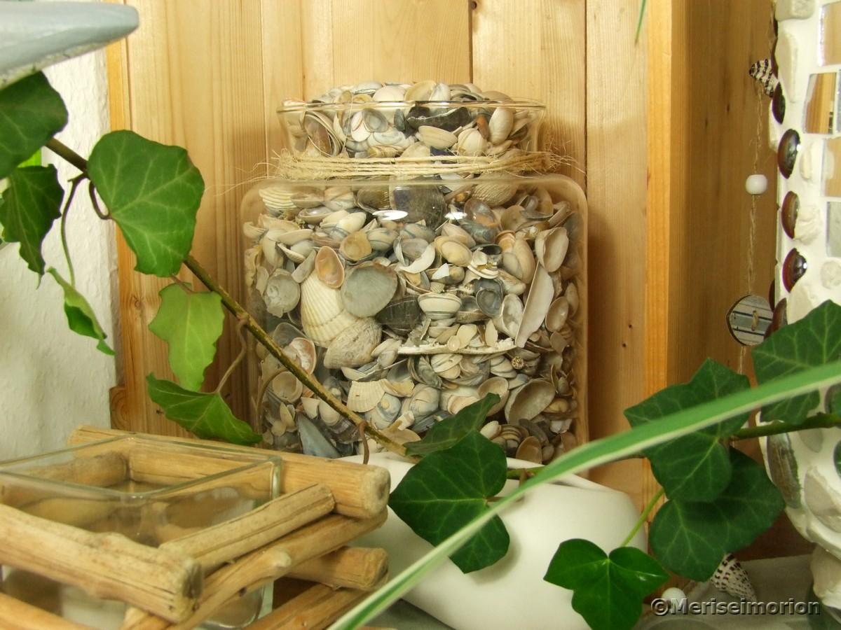 Muscheln dekorieren