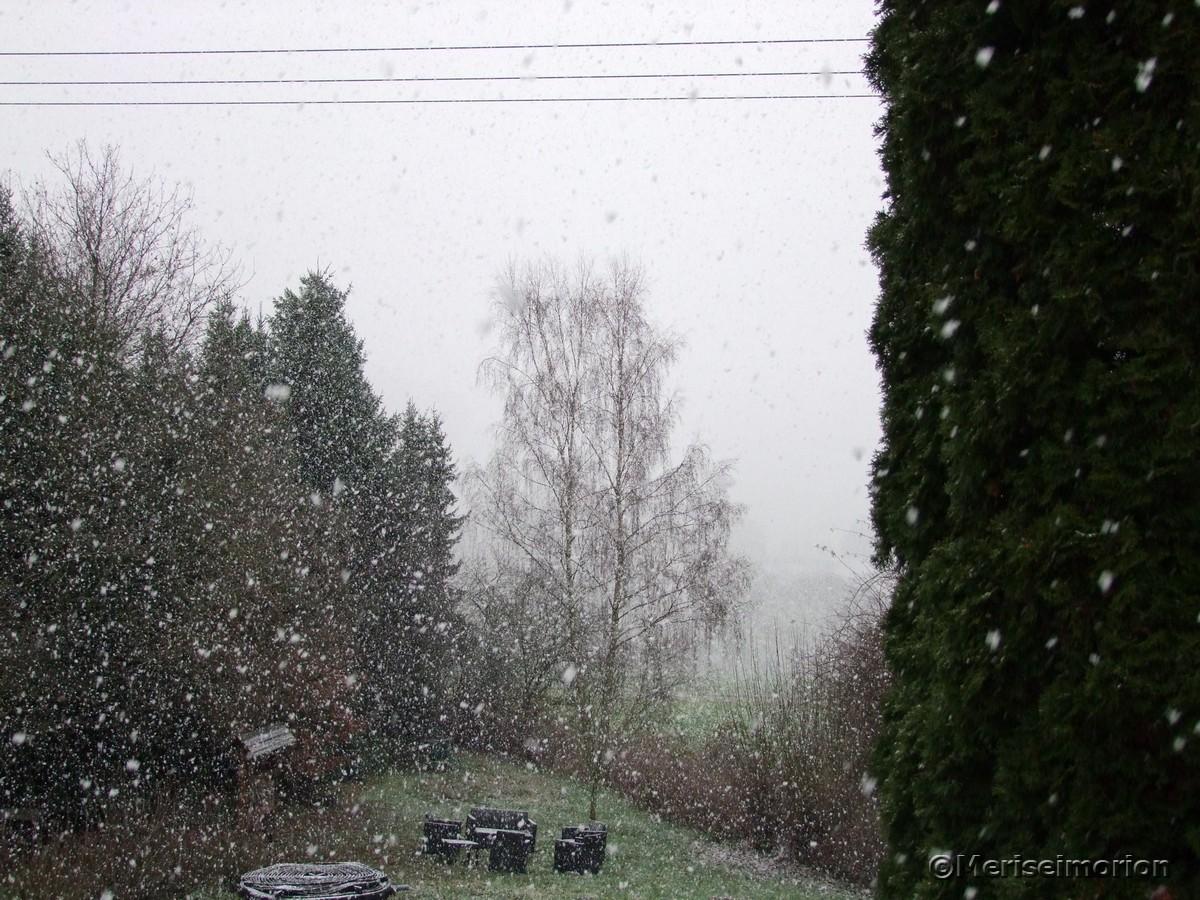 Schneegestöber im Westerwald