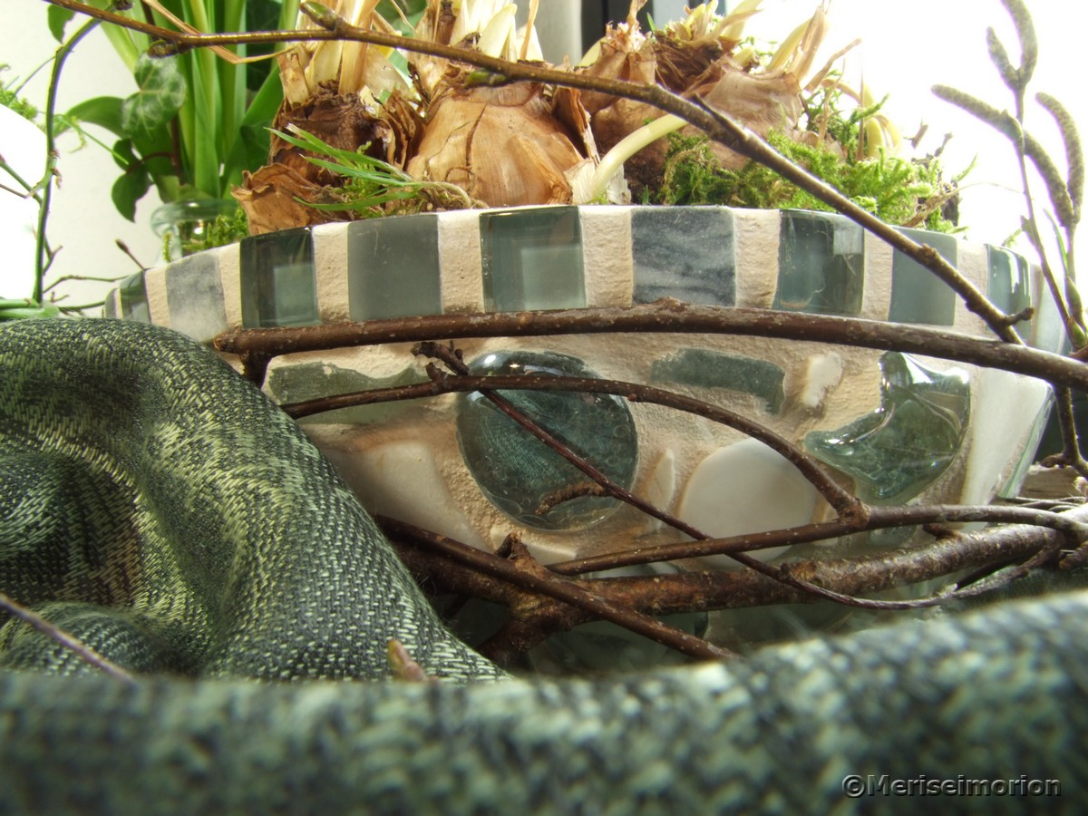 Mosaikschale bepflanzen