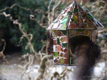 besuch-im-mosaik-vogelfutterhaus