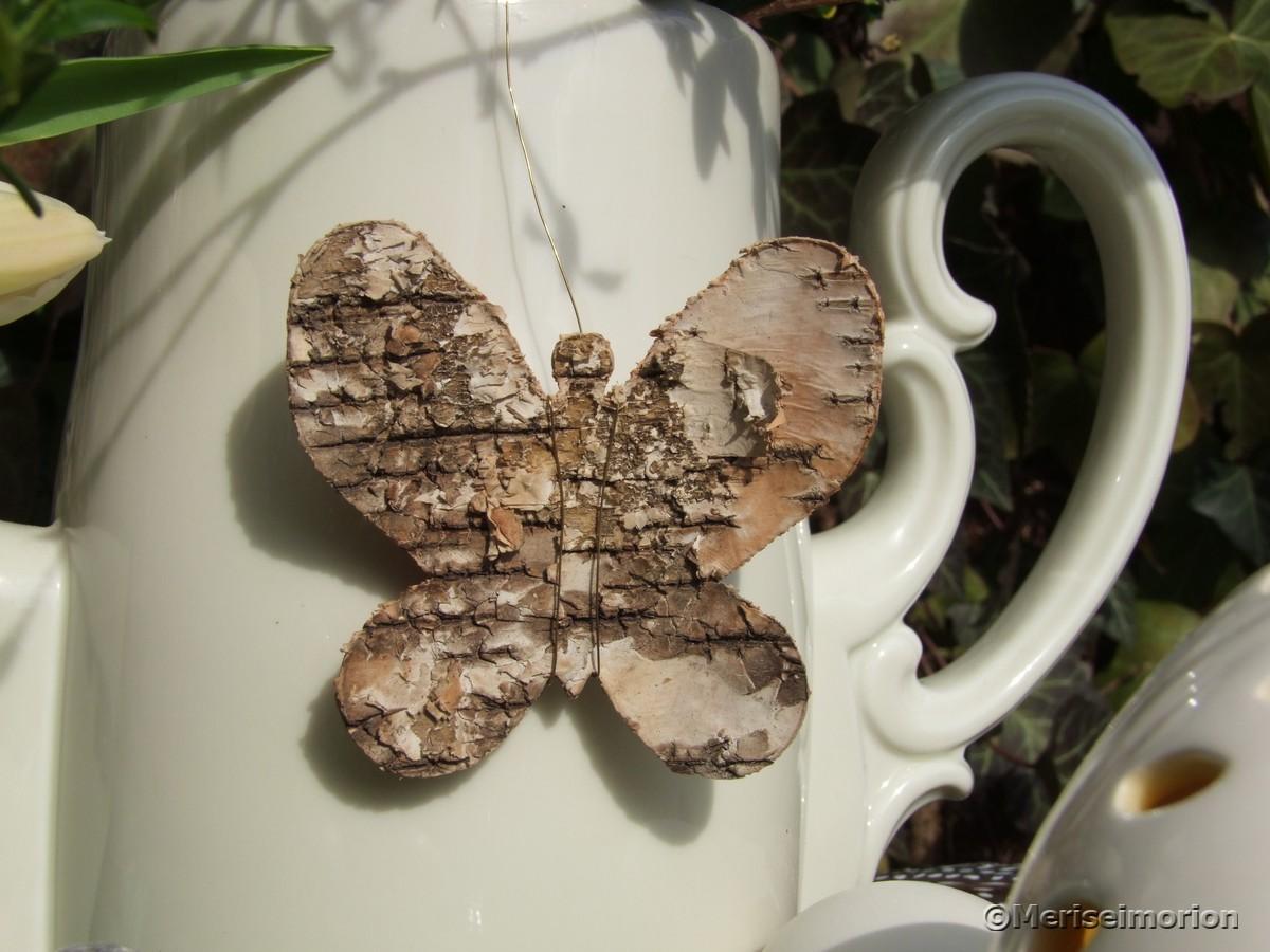 Birkenrinde Schmetterling