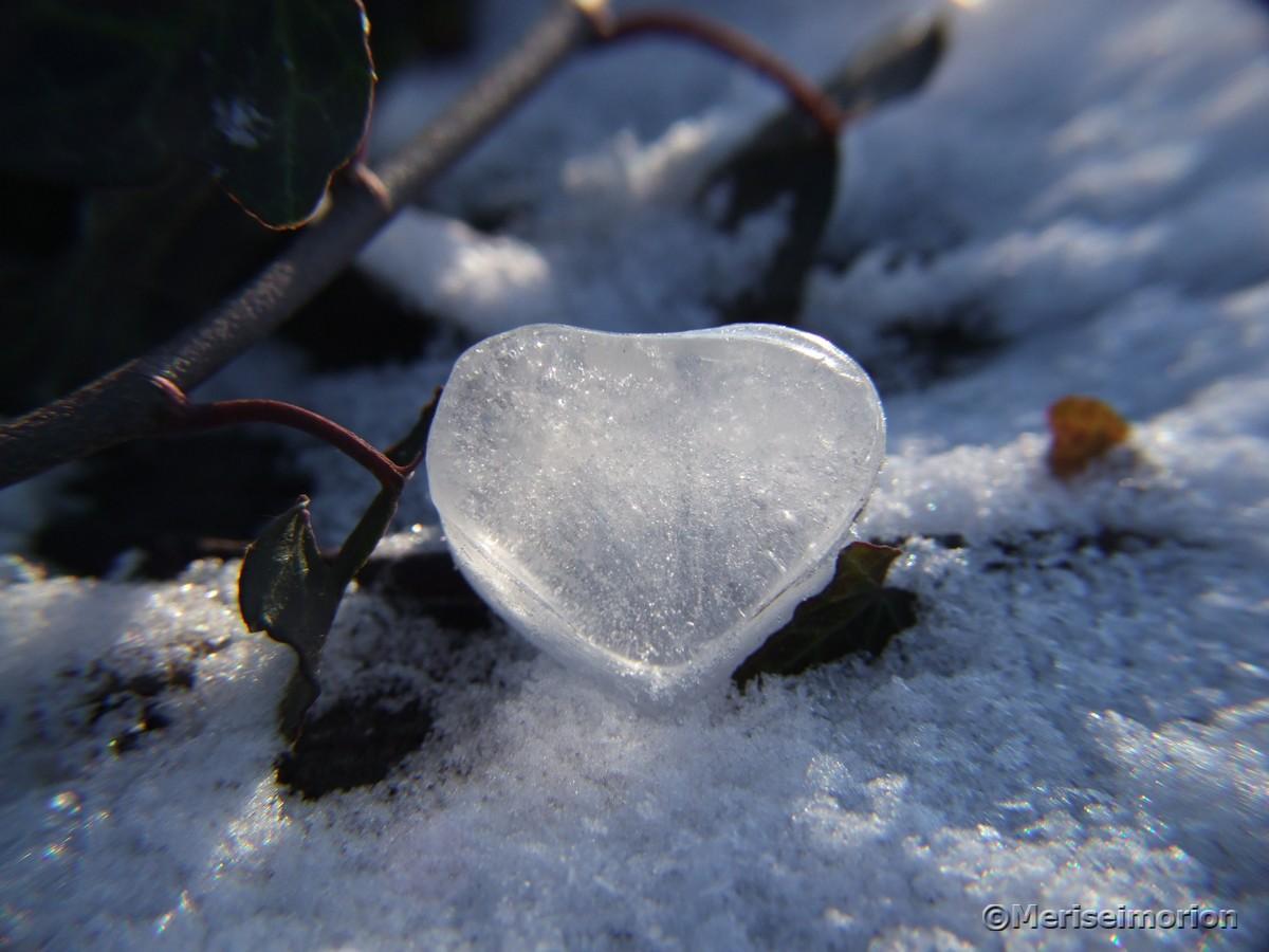 Herz aus Eis