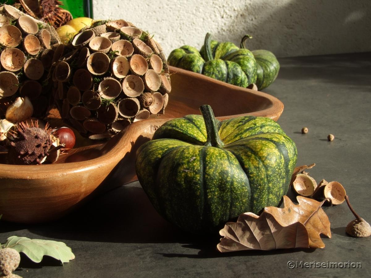 Herbstdeko mit grünen Kürbissen