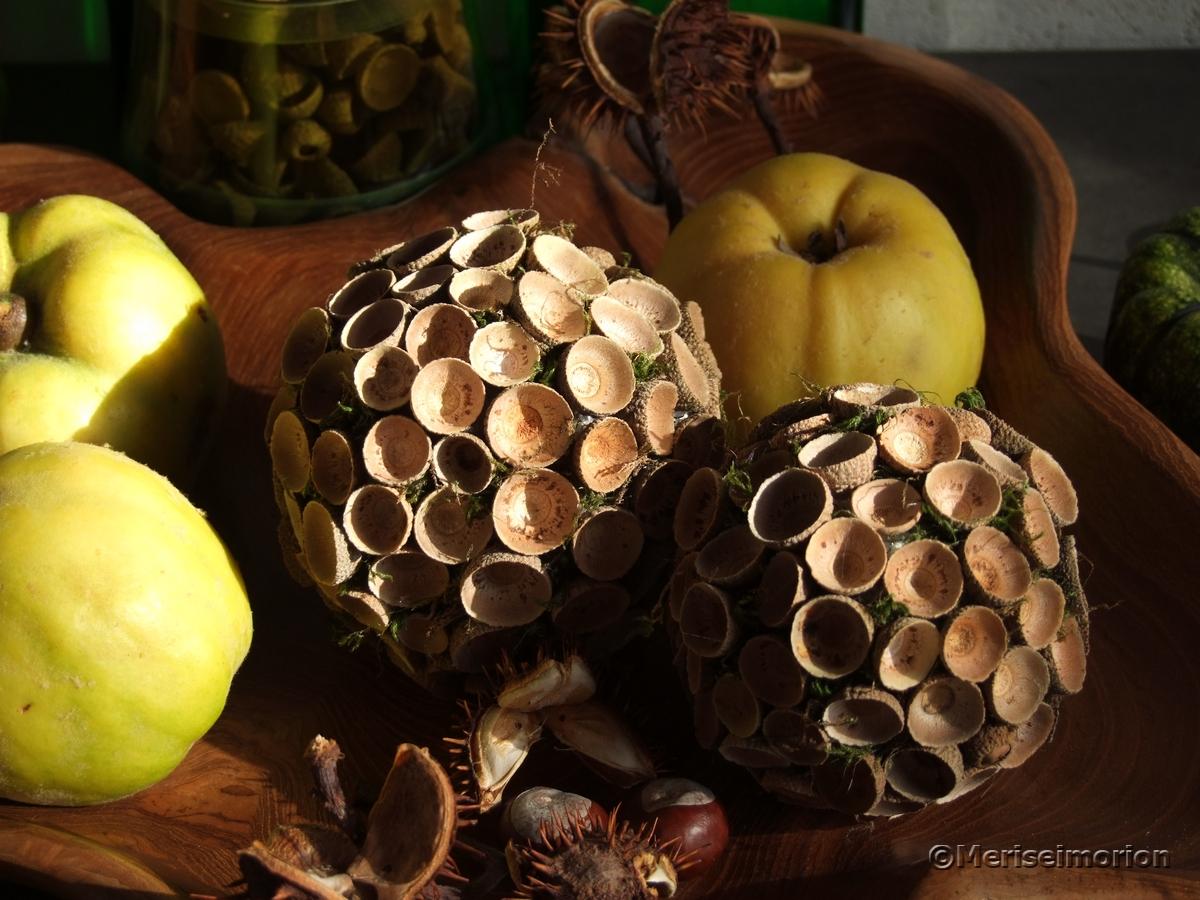 Herbstkugeln basteln mit Eichelhütchen