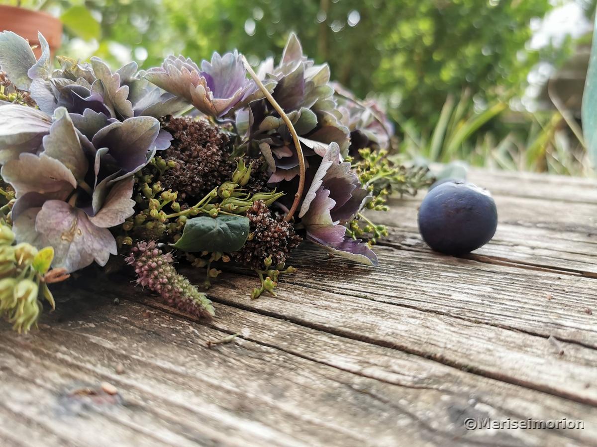 Hortensien und Pfefferminze