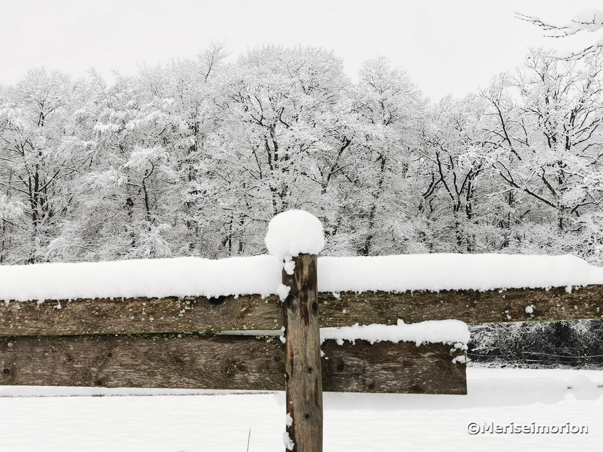 Schnee im rheinischen Westerwald